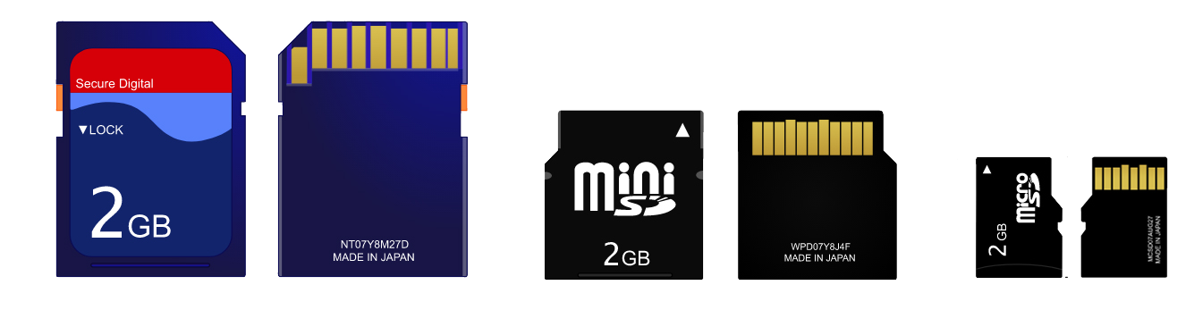 different variations of SD Cards